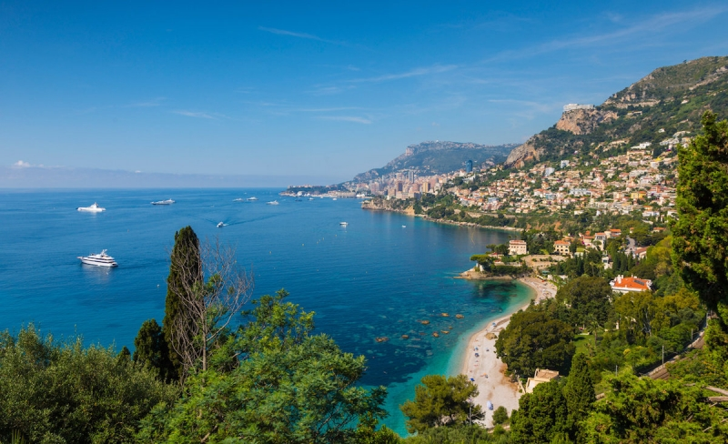 Discover The French Riviera Whale Lifestyle
